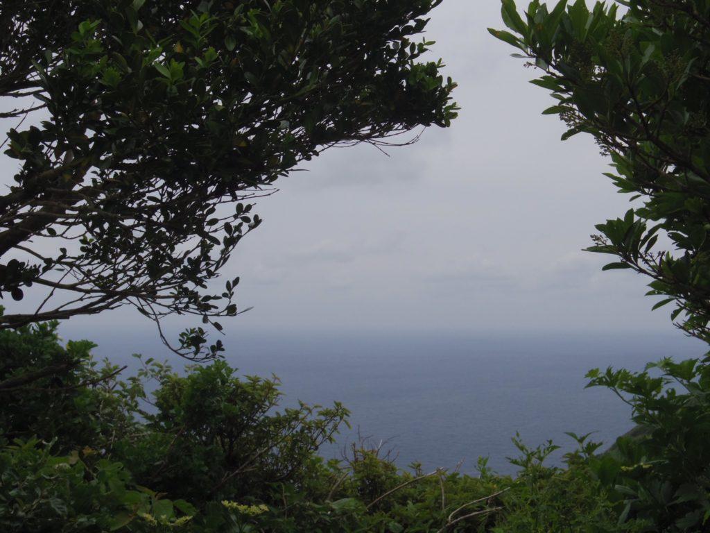 大里神社からの眺め