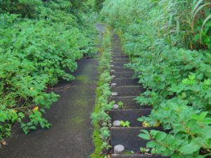 尾山展望公園階段