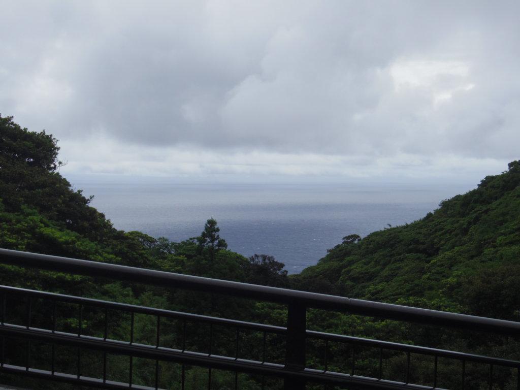 休戸橋からの景色
