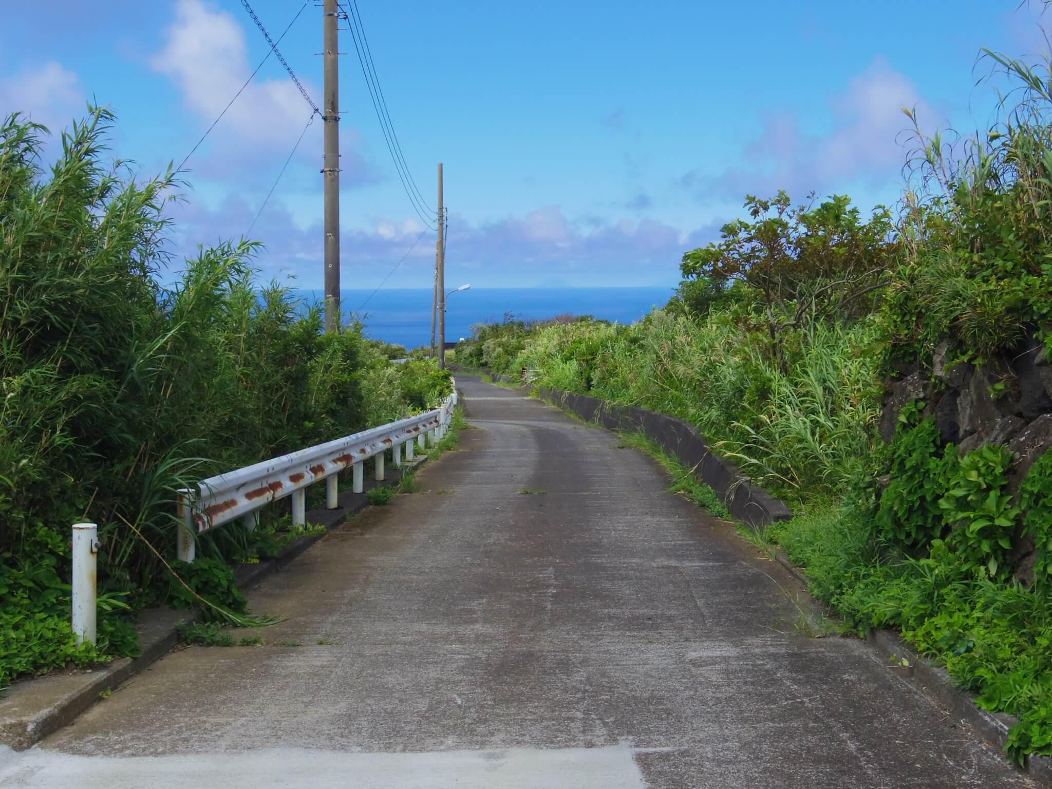 神子ノ浦への道