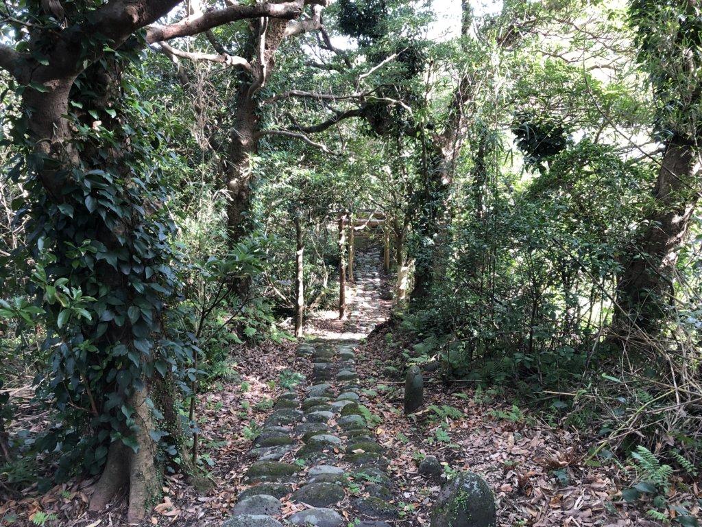 渡海神社⑤