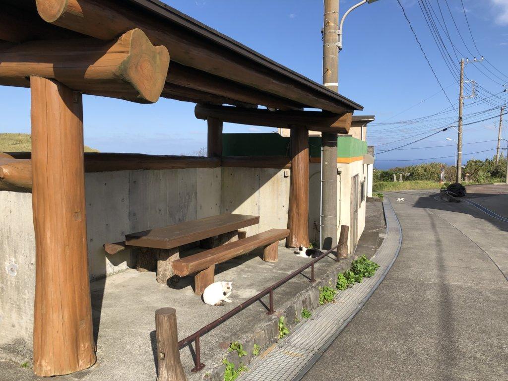 猫の休憩所