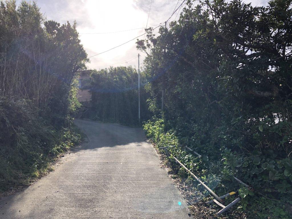 渡海神社への道①
