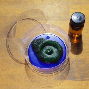 aromashima ワックスサシェ 透明のケース