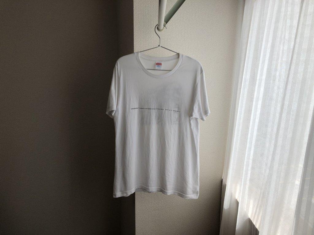 あおちゅうTシャツ①